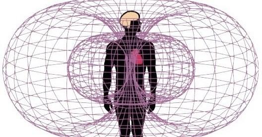 Điện từ trường và sức khỏe con người (Phần 3)